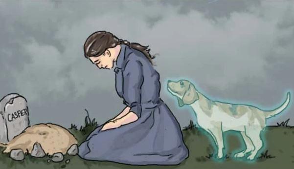 la-perte-de-votre-animal-de-compagnie-domestique