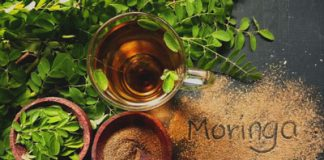 moringa-gelules-et-pertes-de-poids